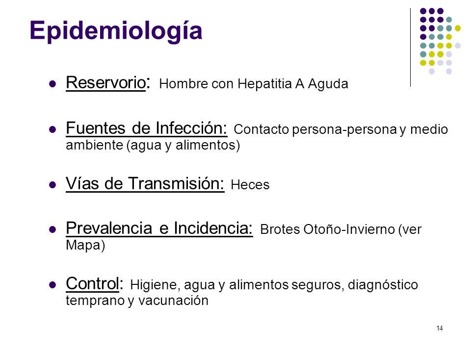 Epidemiología Reservorio: Hombre con Hepatitia A Aguda