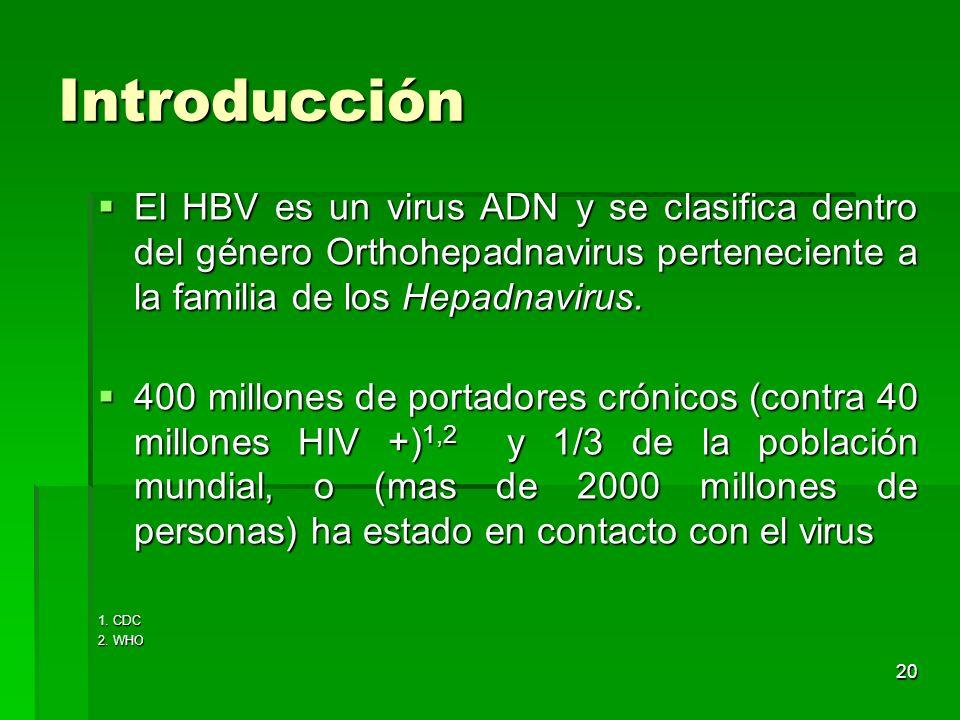Introducción El HBV es un virus ADN y se clasifica dentro del género Orthohepadnavirus perteneciente a la familia de los Hepadnavirus.