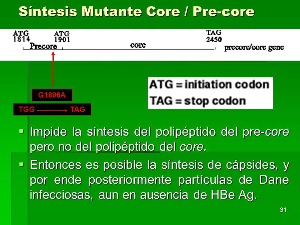 Síntesis Mutante Core / Pre-core