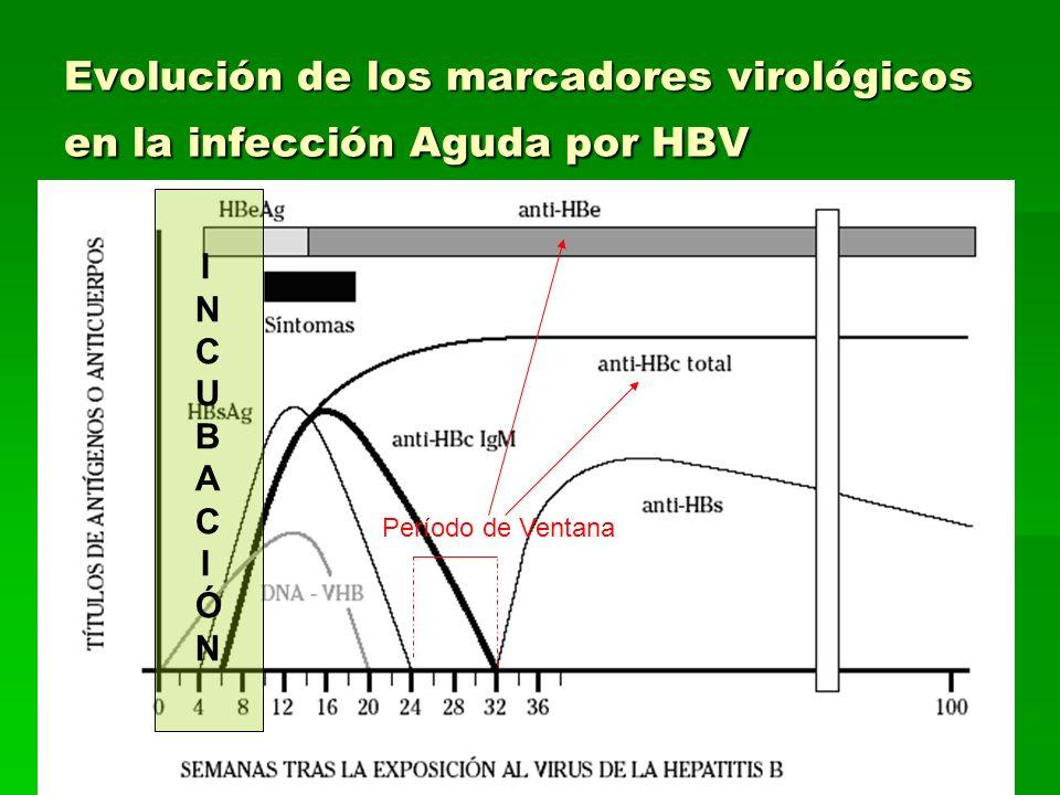 Evolución de los marcadores virológicos en la infección Aguda por HBV