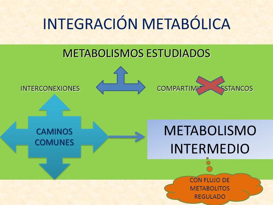 INTEGRACIÓN METABÓLICA