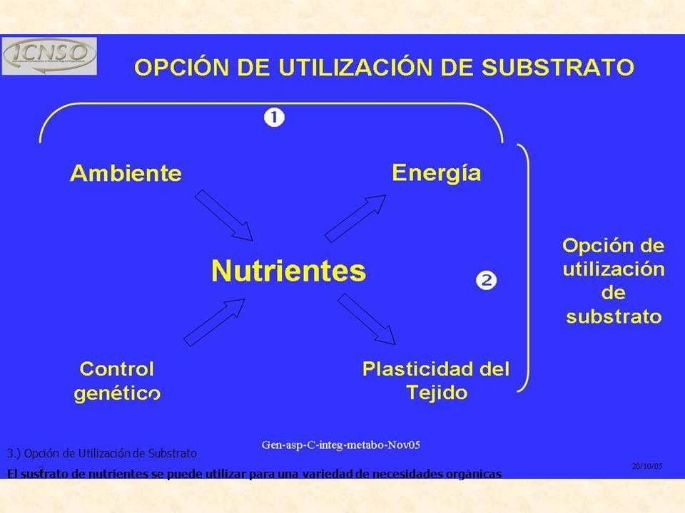 3.) Opción de Utilización de Substrato.