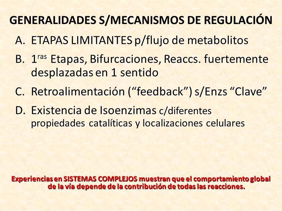GENERALIDADES S/MECANISMOS DE REGULACIÓN
