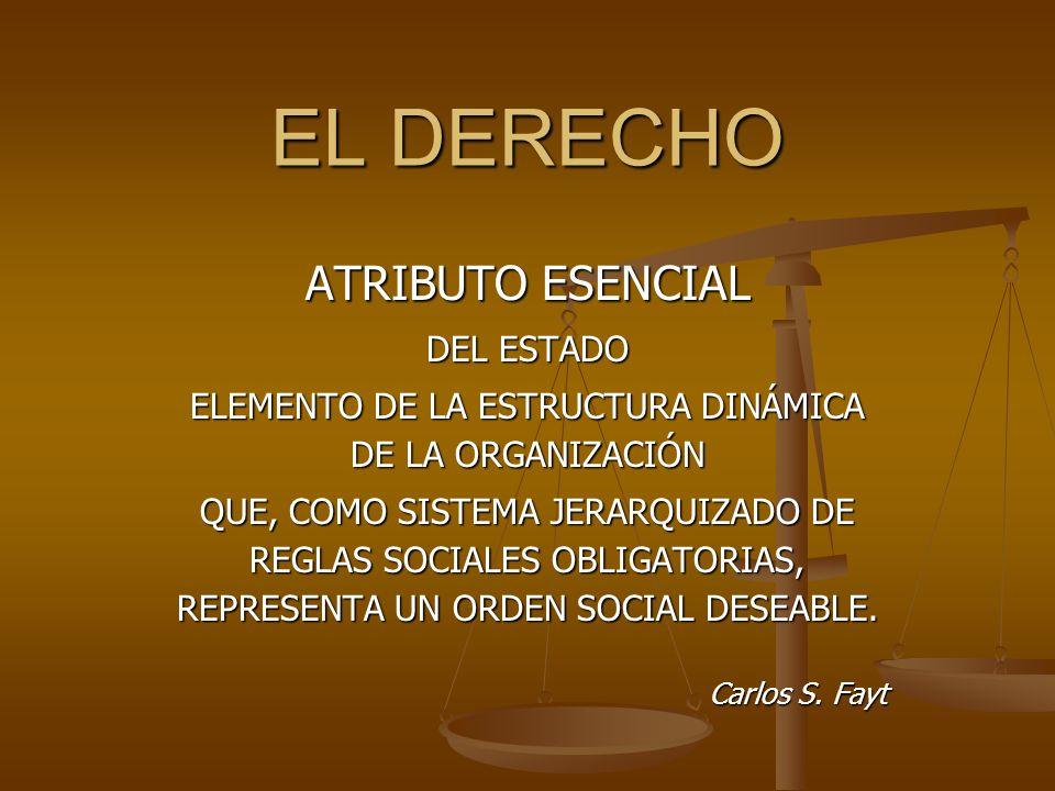 ELEMENTO DE LA ESTRUCTURA DINÁMICA DE LA ORGANIZACIÓN