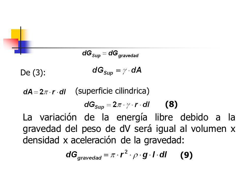 De (3): (superficie cilindrica) (8)
