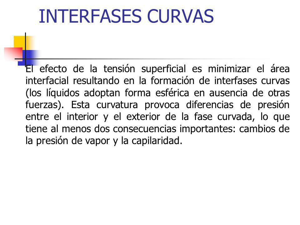 INTERFASES CURVAS