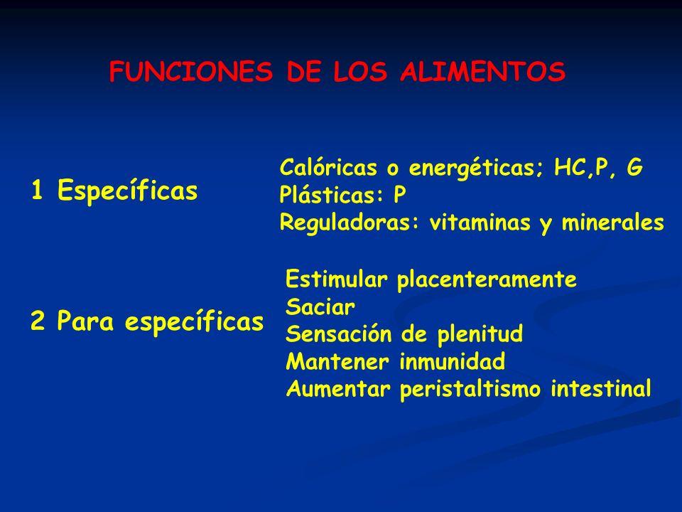 FUNCIONES DE LOS ALIMENTOS