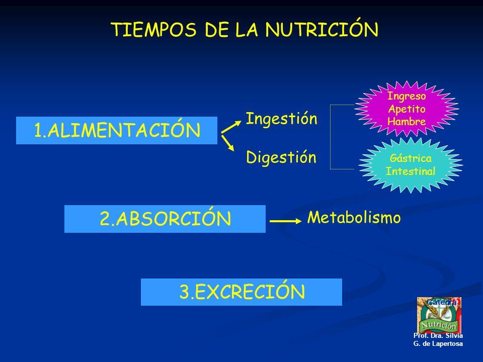 TIEMPOS DE LA NUTRICIÓN