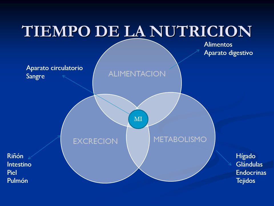 TIEMPO DE LA NUTRICION Alimentos Aparato digestivo