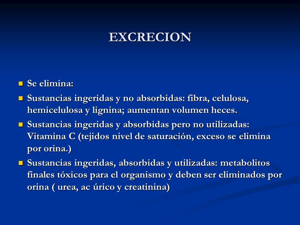 EXCRECION Se elimina: Sustancias ingeridas y no absorbidas: fibra, celulosa, hemicelulosa y lignina; aumentan volumen heces.