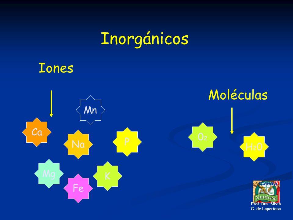 Inorgánicos Iones Moléculas Mn Ca 02 P Na H20 Mg K Fe Catedra
