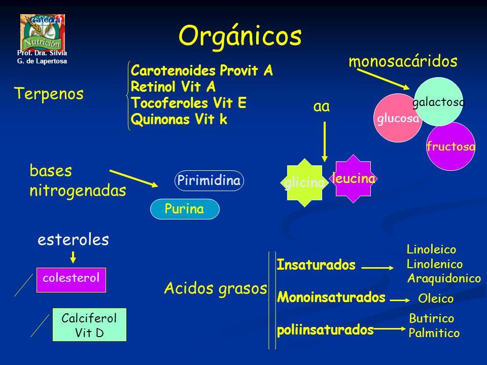Orgánicos monosacáridos Terpenos aa bases nitrogenadas esteroles