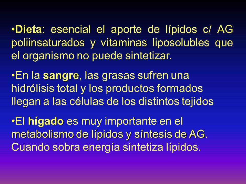Dieta: esencial el aporte de lípidos c/ AG poliinsaturados y vitaminas liposolubles que el organismo no puede sintetizar.