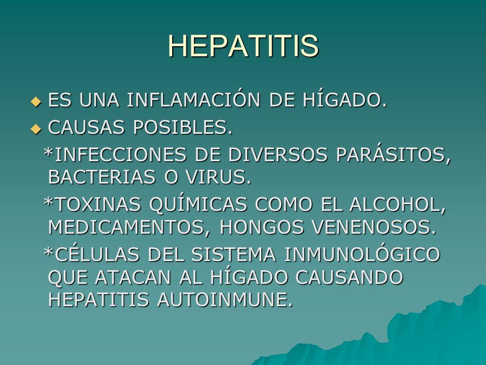 HEPATITIS ES UNA INFLAMACIÓN DE HÍGADO. CAUSAS POSIBLES.