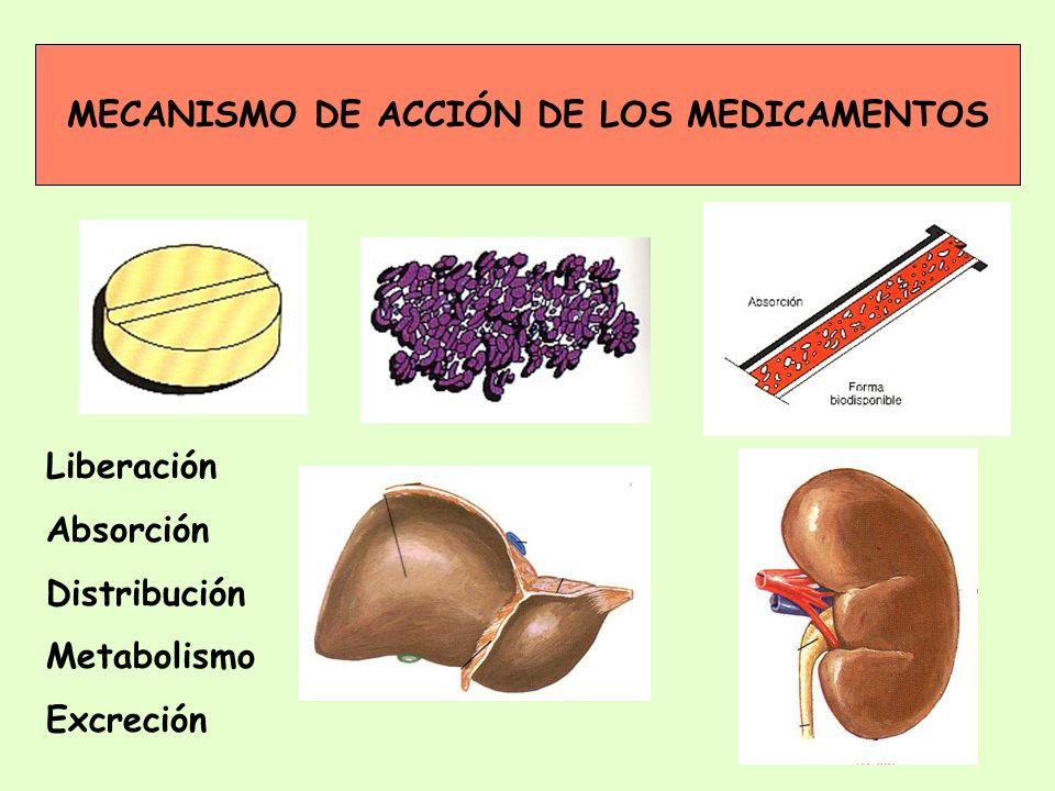 MECANISMO DE ACCIÓN DE LOS MEDICAMENTOS