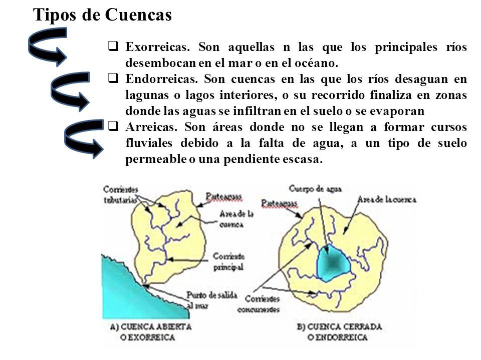 Tipos de CuencasExorreicas. Son aquellas n las que los principales ríos desembocan en el mar o en el océano.