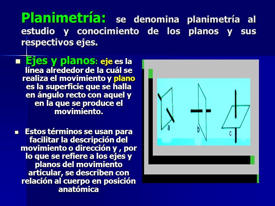 Planimetría: se denomina planimetría al estudio y conocimiento de los planos y sus respectivos ejes.