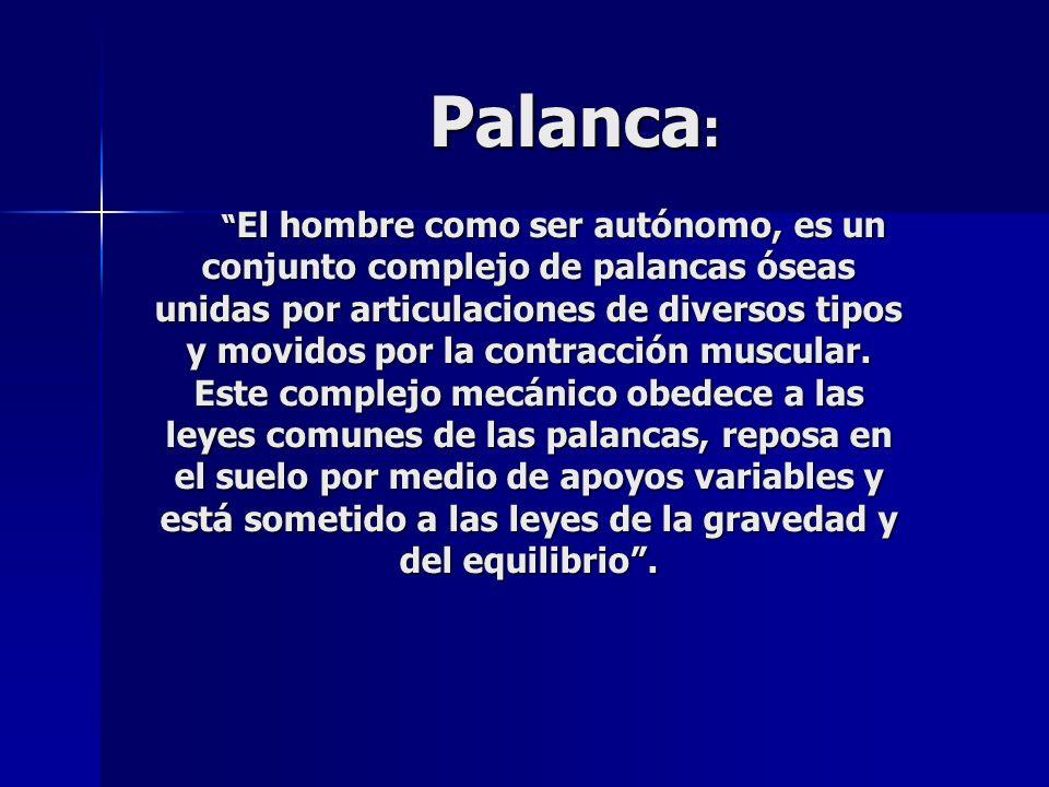Palanca: El hombre como ser autónomo, es un conjunto complejo de palancas óseas unidas por articulaciones de diversos tipos y movidos por la contracción muscular.