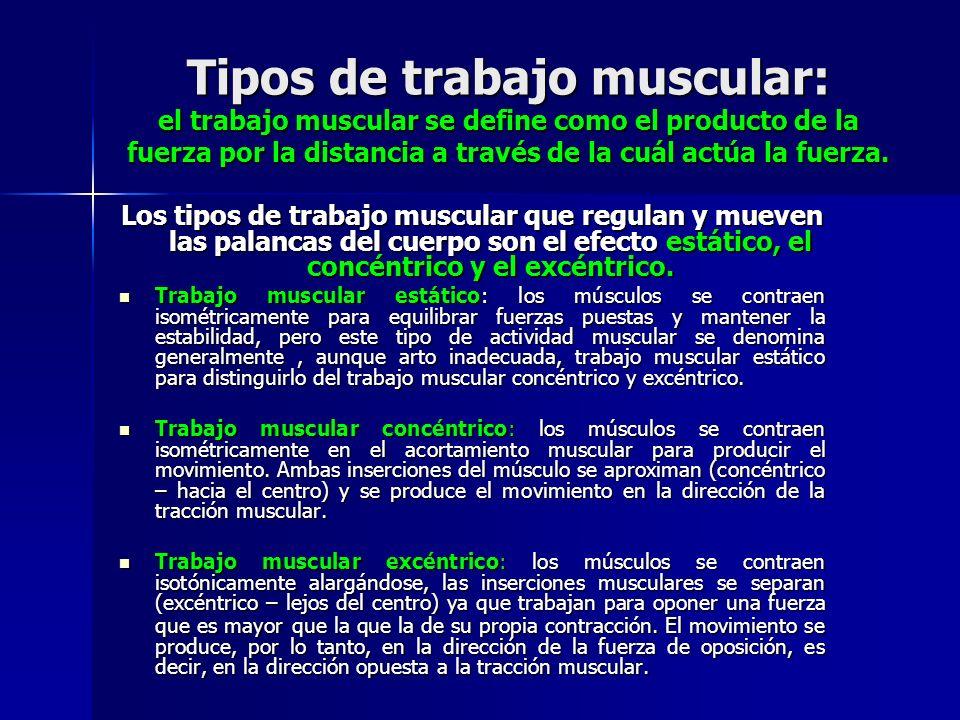 Tipos de trabajo muscular: el trabajo muscular se define como el producto de la fuerza por la distancia a través de la cuál actúa la fuerza.