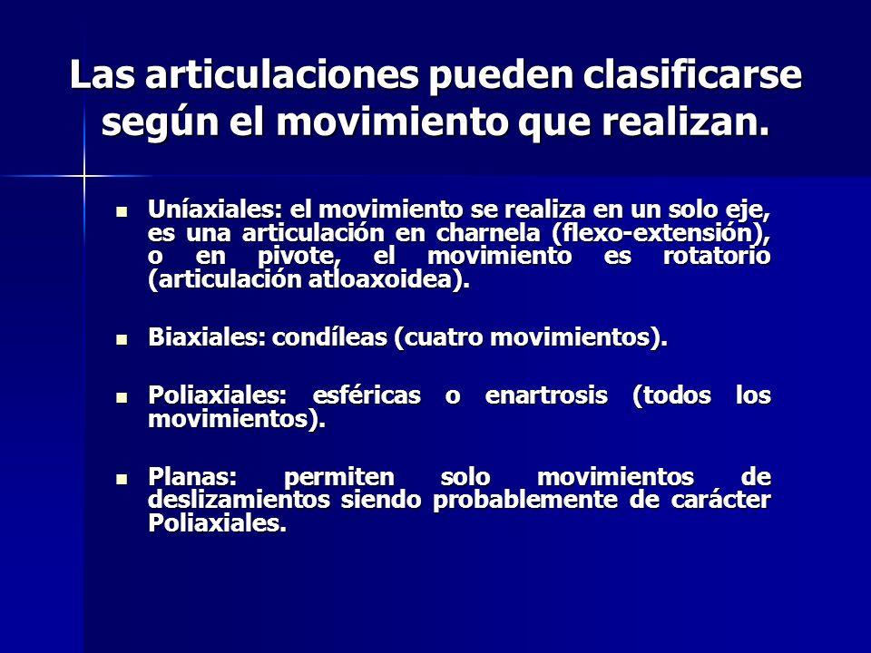 Las articulaciones pueden clasificarse según el movimiento que realizan.