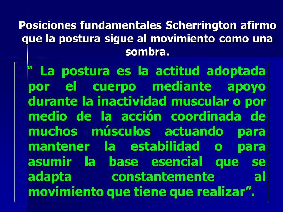 Posiciones fundamentales Scherrington afirmo que la postura sigue al movimiento como una sombra.