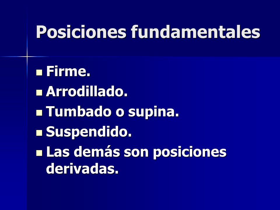 Posiciones fundamentales
