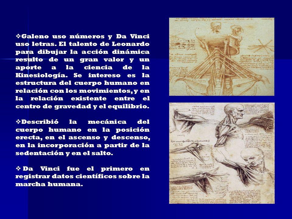 Galeno uso números y Da Vinci uso letras