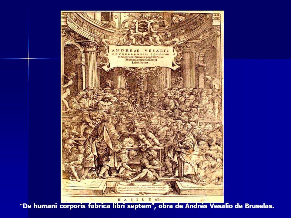 De humani corporis fabrica libri septem , obra de Andrés Vesalio de Bruselas.
