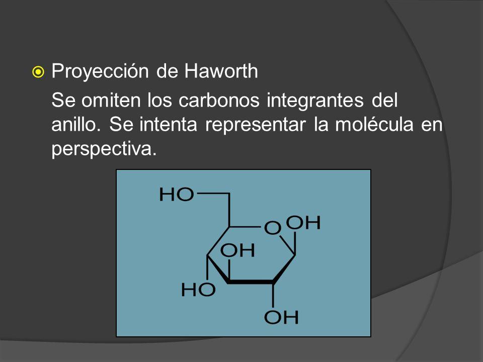 Proyección de Haworth Se omiten los carbonos integrantes del anillo.