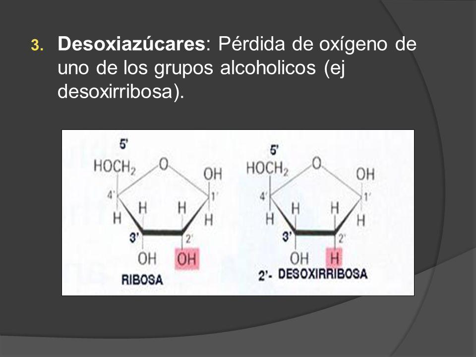 Desoxiazúcares: Pérdida de oxígeno de uno de los grupos alcoholicos (ej desoxirribosa).