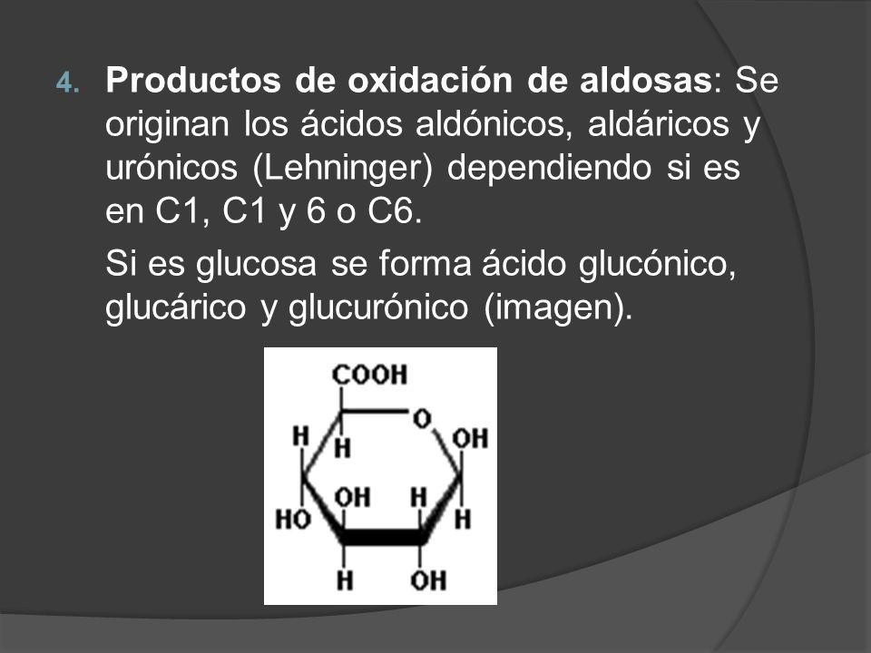 Productos de oxidación de aldosas: Se originan los ácidos aldónicos, aldáricos y urónicos (Lehninger) dependiendo si es en C1, C1 y 6 o C6.
