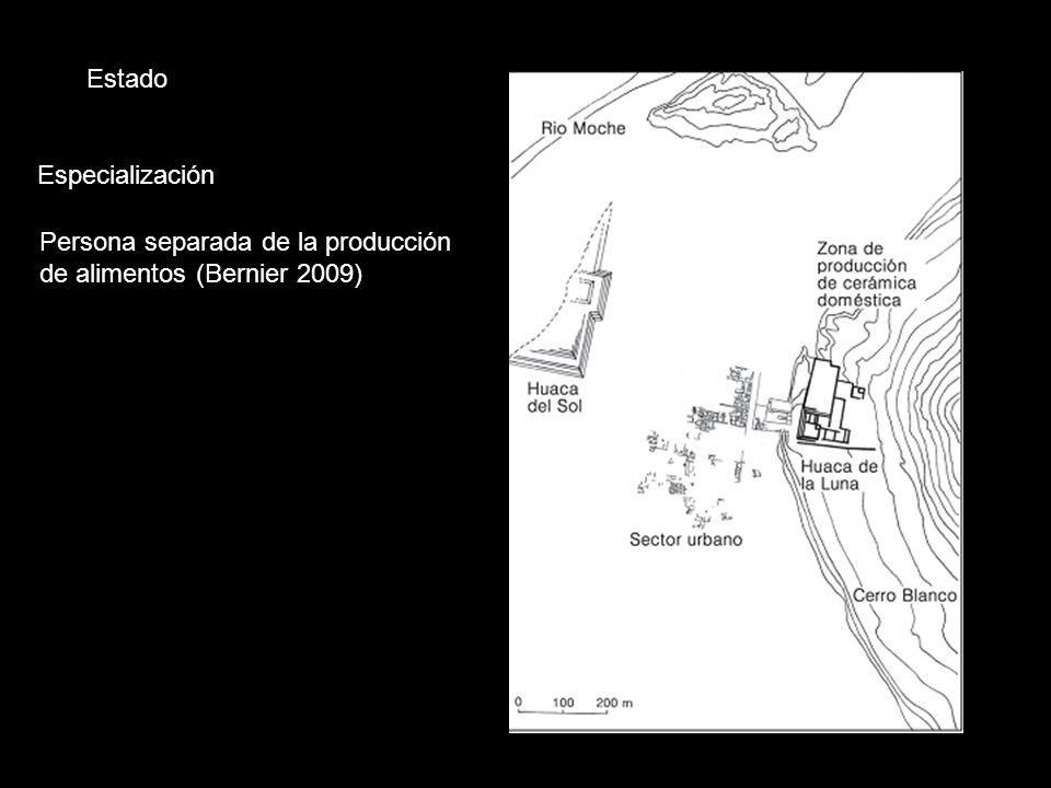 Estado Especialización Persona separada de la producción de alimentos (Bernier 2009)