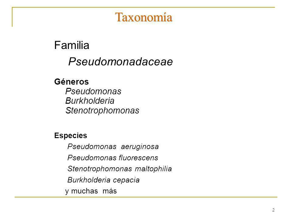 Taxonomía Familia Pseudomonadaceae Pseudomonas Burkholderia