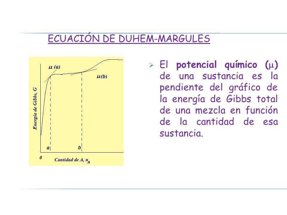 Ecuación de Duhem-Margules
