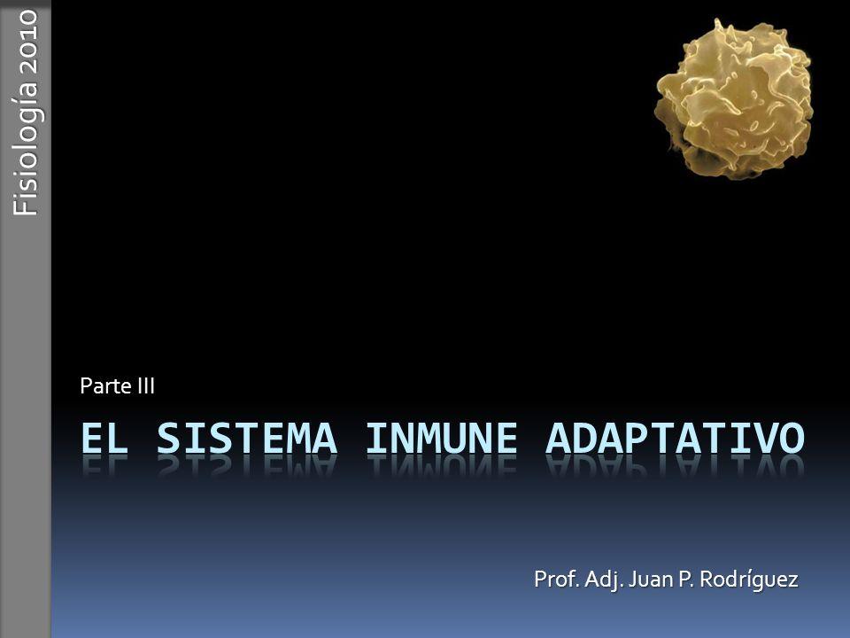 El sistema inmune Adaptativo