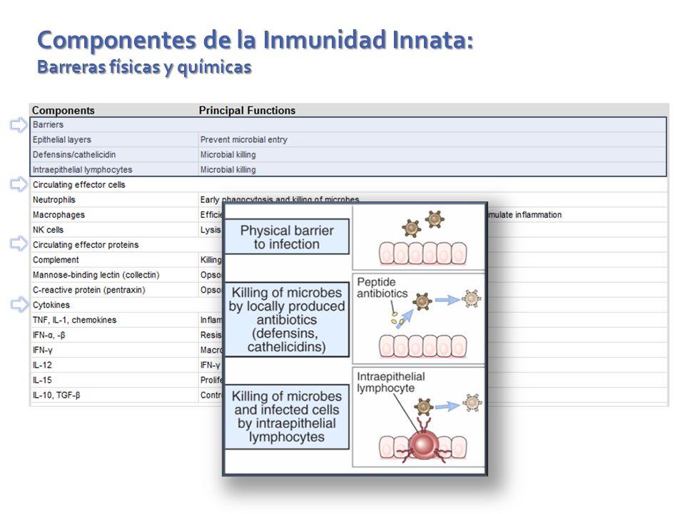Componentes de la Inmunidad Innata: