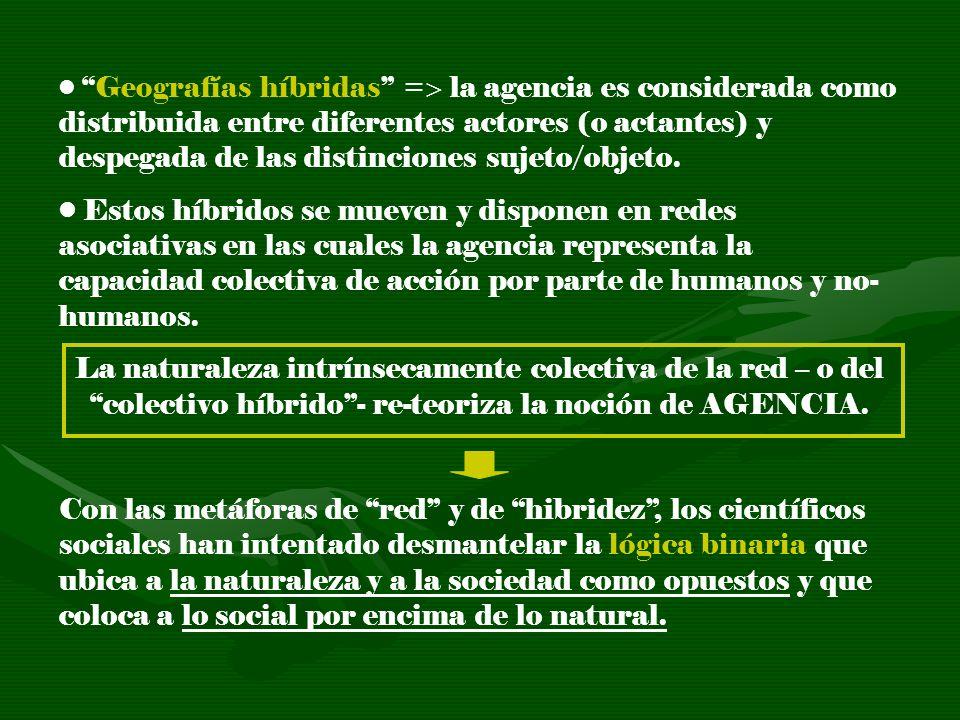 Geografías híbridas = la agencia es considerada como distribuida entre diferentes actores (o actantes) y despegada de las distinciones sujeto/objeto.