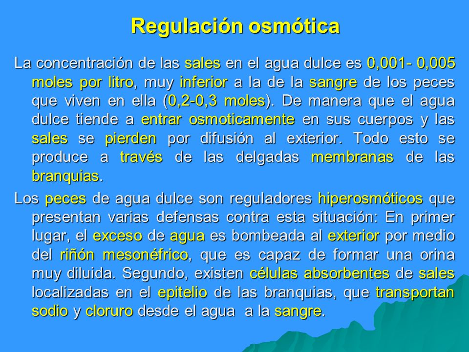 Regulación osmótica