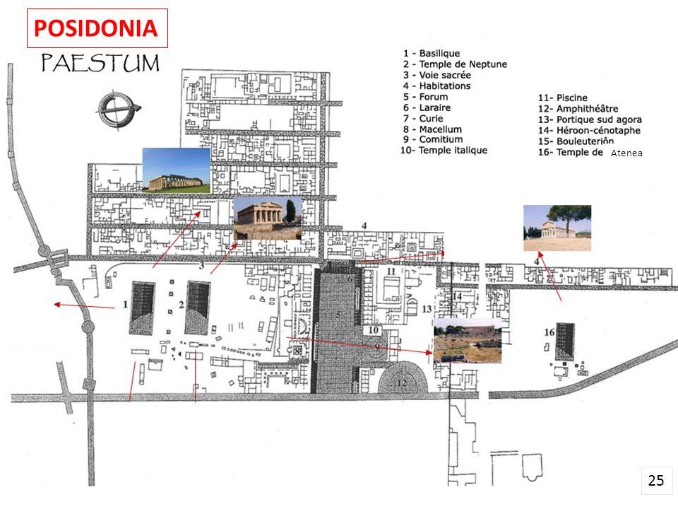 POSIDONIA Atenea 25
