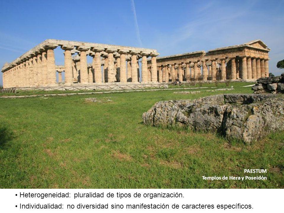 Heterogeneidad: pluralidad de tipos de organización.