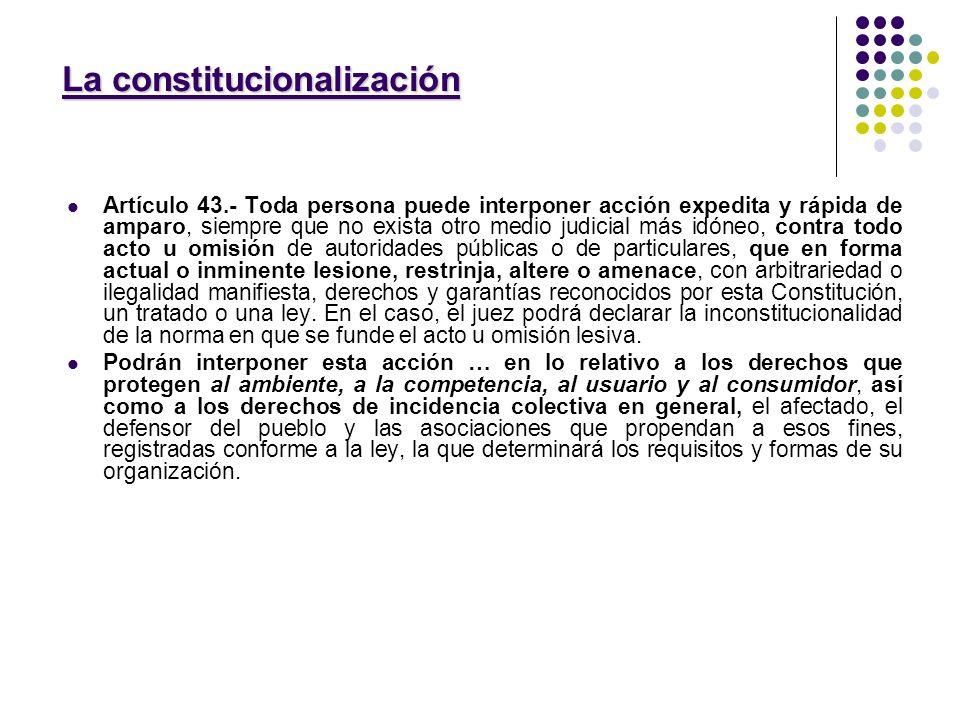 La constitucionalización