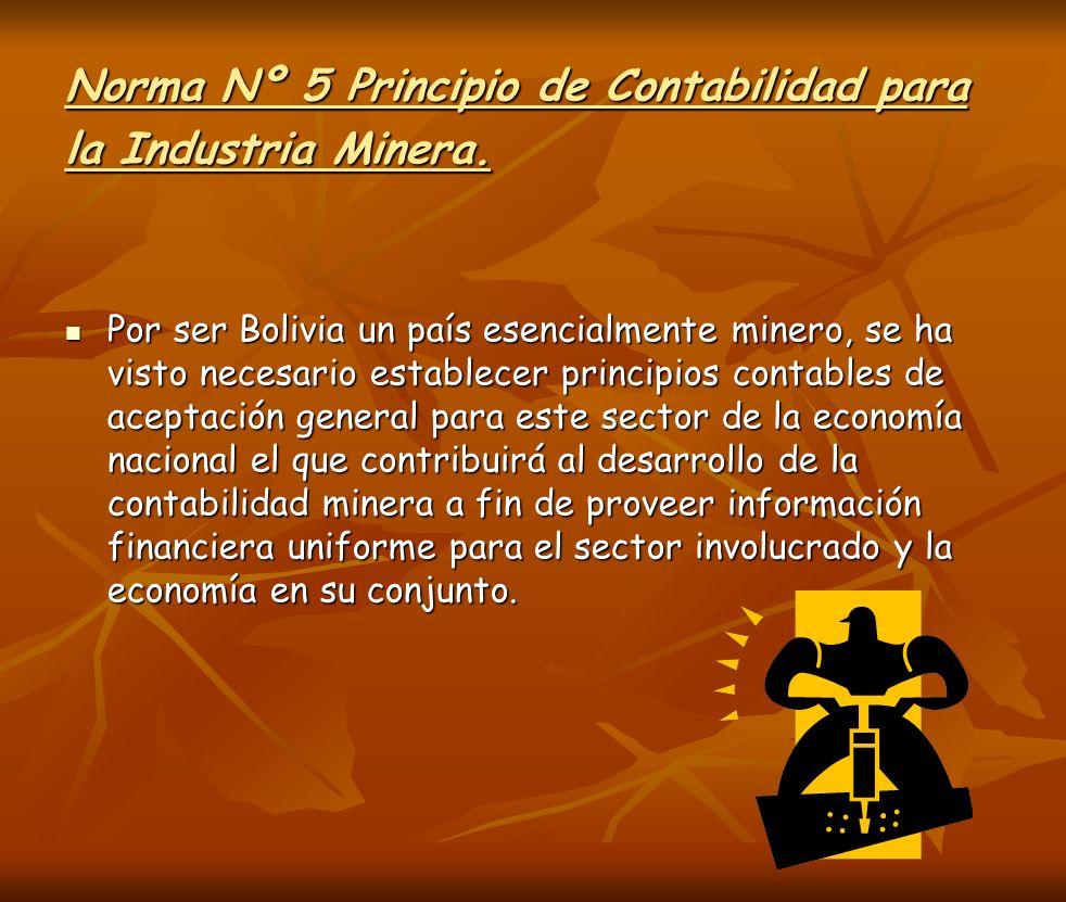 Norma Nº 5 Principio de Contabilidad para la Industria Minera.