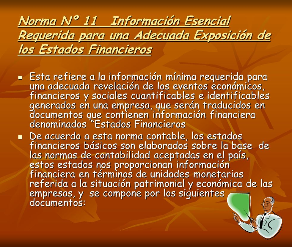 Norma Nº 11 Información Esencial