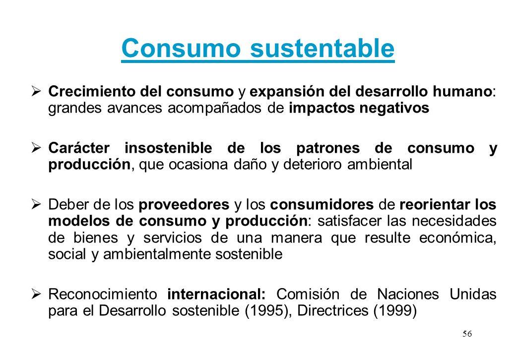 Consumo sustentable Crecimiento del consumo y expansión del desarrollo humano: grandes avances acompañados de impactos negativos.