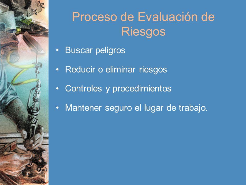 Proceso de Evaluación de Riesgos