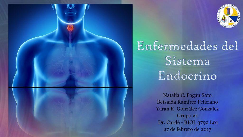 Enfermedades del sistema endocrino ppt descargar.