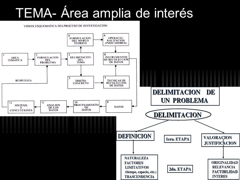 TEMA- Área amplia de interés