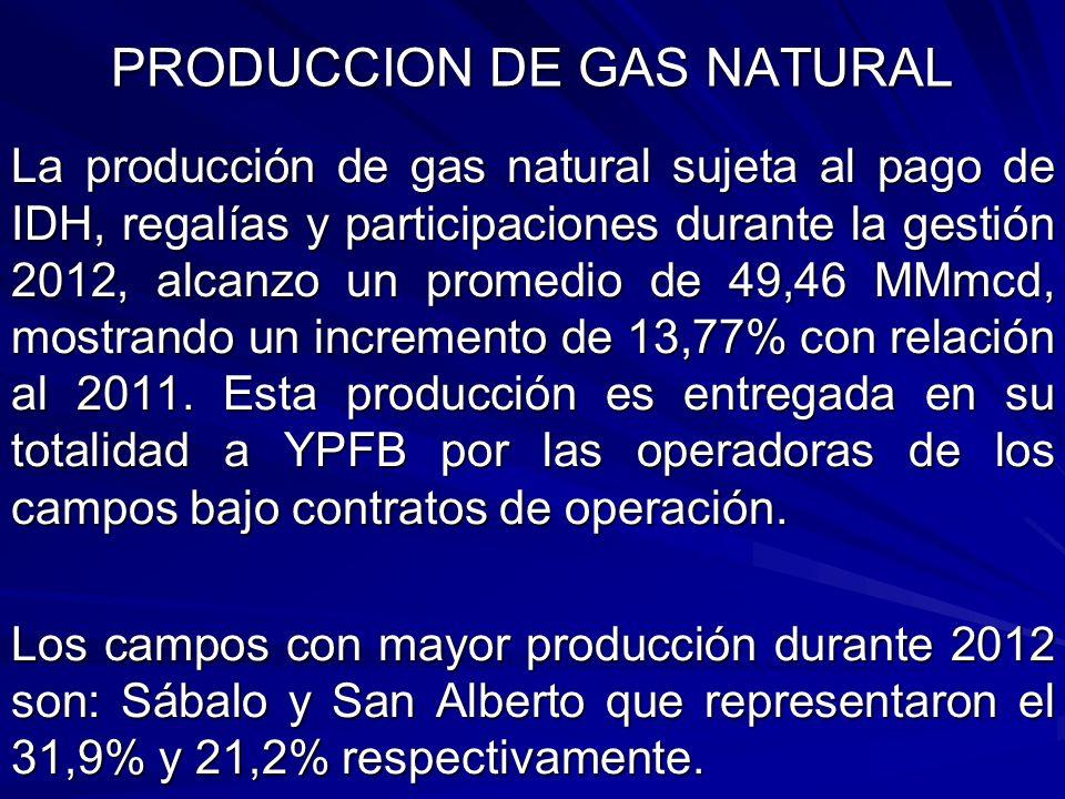 PRODUCCION DE GAS NATURAL