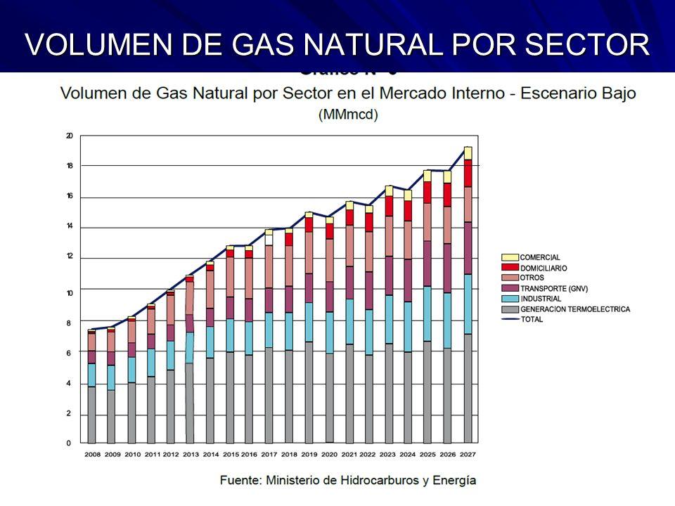 VOLUMEN DE GAS NATURAL POR SECTOR