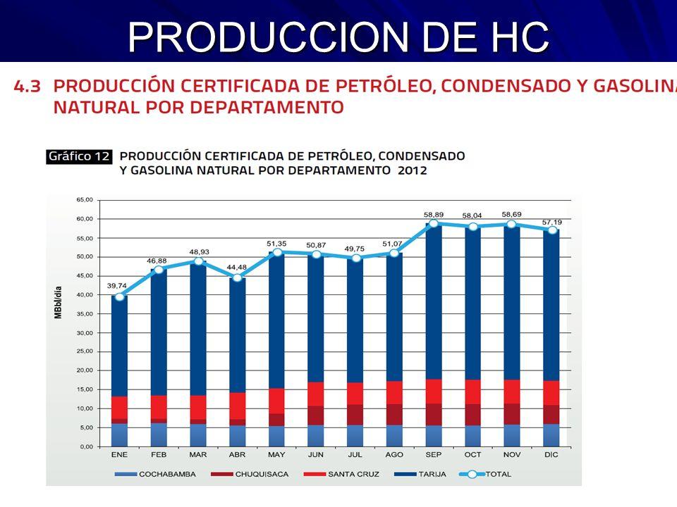 PRODUCCION DE HC